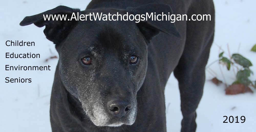 Alert Watchdogs